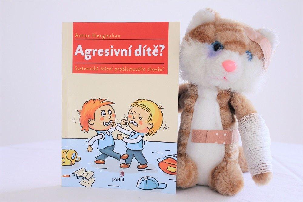 agresivní dítě, agresivita, problémové chování