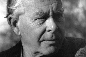Vazba v psychoterapii David Wallin John Bowlb attachment citová vazba připoutání vývojová psychologie